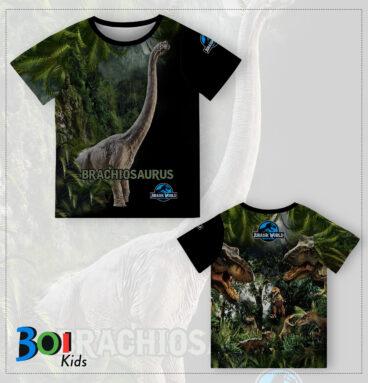 BOI-0062A